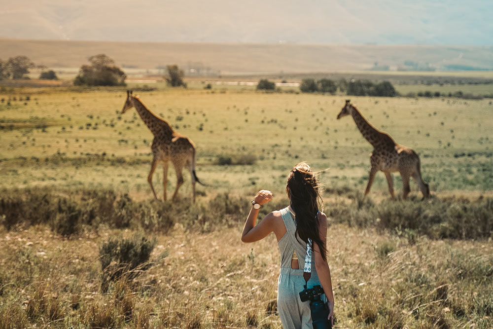 girl-on-safari-in-south-africa